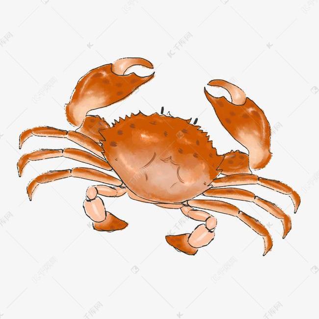 手绘海鲜螃蟹插画素材图片免费下载 高清psd 千库网 图片编号11464749