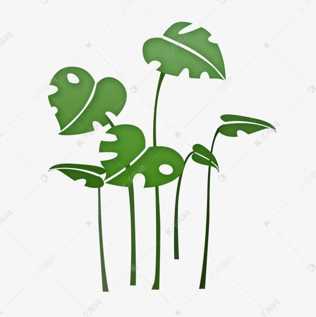 春天手绘绿植小清新龟背竹素材图片免费下载 高清psd 千库网 图片编号11784957