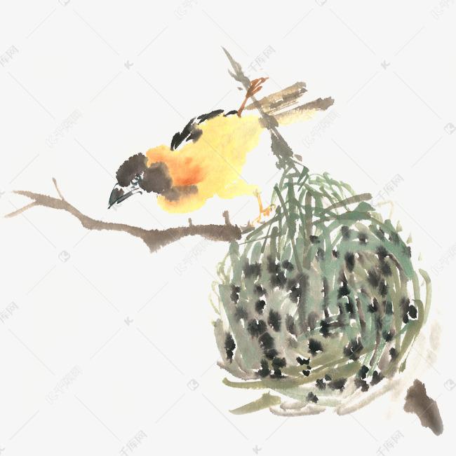小鸟与鸟巢水墨画png免抠素材