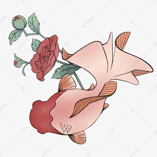 漂亮的小金鱼免抠图素材图片免费下载 高清psd 千库网 图片编号11799416