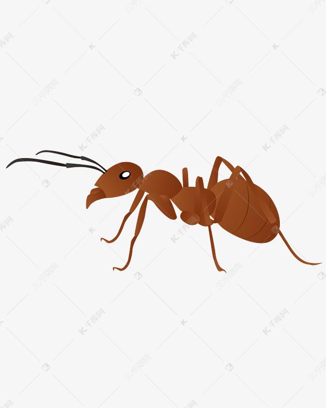 矢量手绘卡通蚂蚁素材图片免费下载 千库网