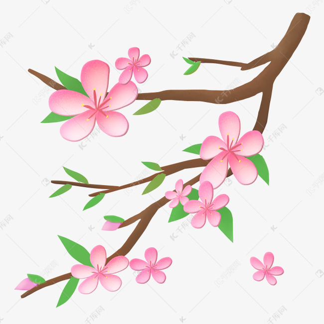 卡通手绘植物插画桃花桃花素材图片免费下载 高清psd 千库网 图片编号11874003