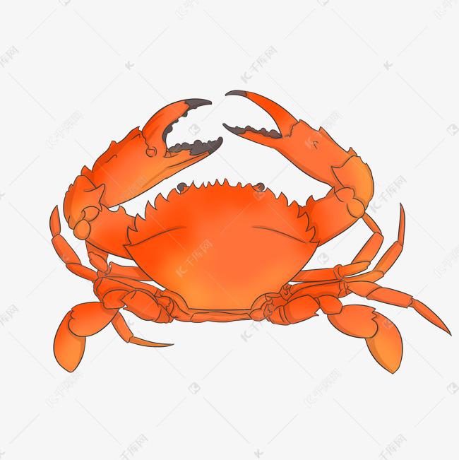 手绘海鲜螃蟹插画素材图片免费下载 千库网