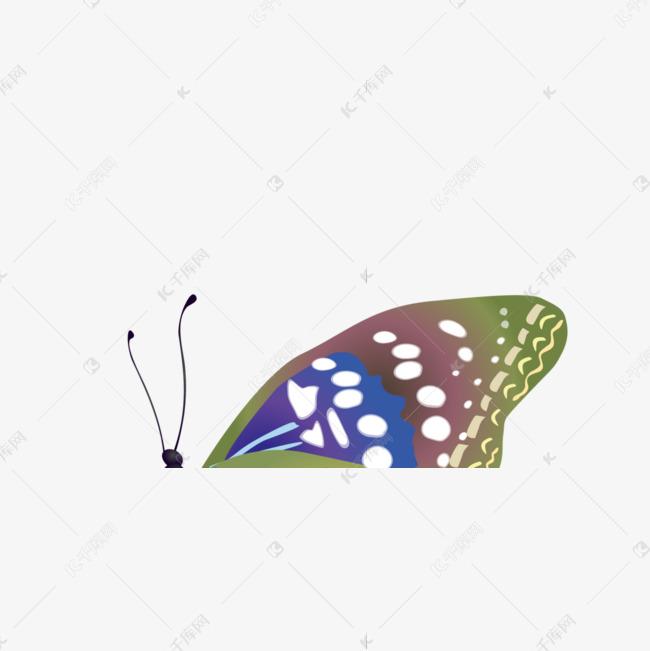精美紫色手绘美丽蝴蝶
