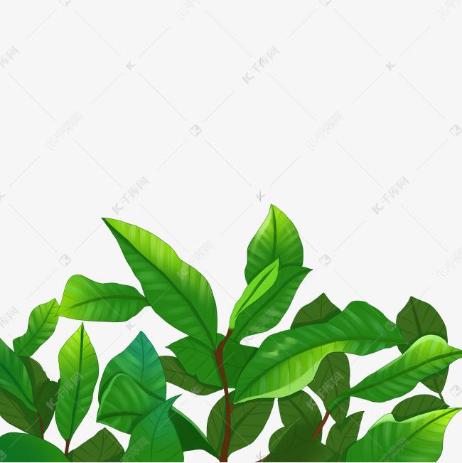 仿真茶树叶子素材图片免费下载 千库网