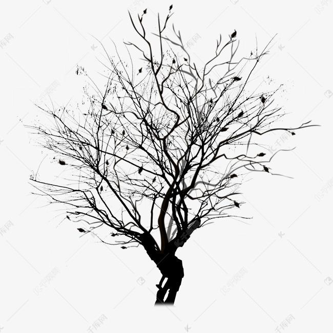 落叶树枯树枝素材图片免费下载 千库网