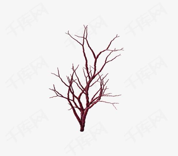 枯树枝素材图片免费下载 高清装饰图案png 千库网 图片编号895947
