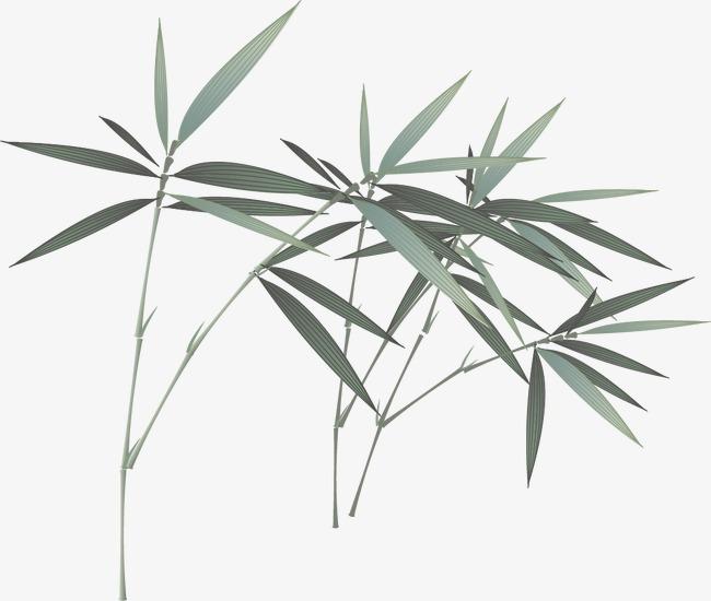 中国风水墨竹子