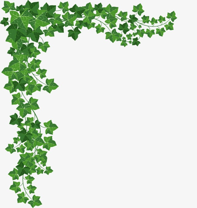 设计元素 背景素材 其他 > 绿色植物边框  [版权图片] 找相似下一张 >