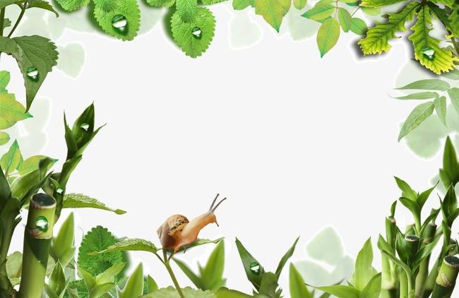图片 > 【png】 春天 绿色 边框 树叶  分类:边框纹理 类目:其他 格式