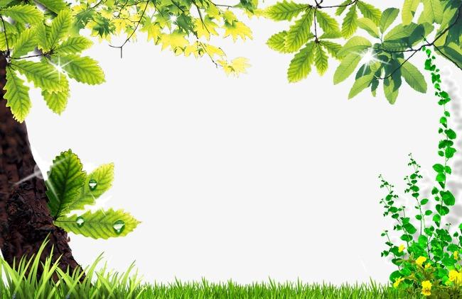 春天 绿色 边框 树叶