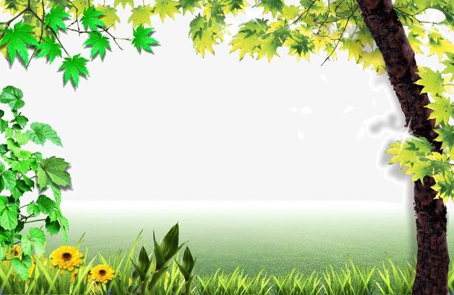 春天 绿色 边框 树叶图片