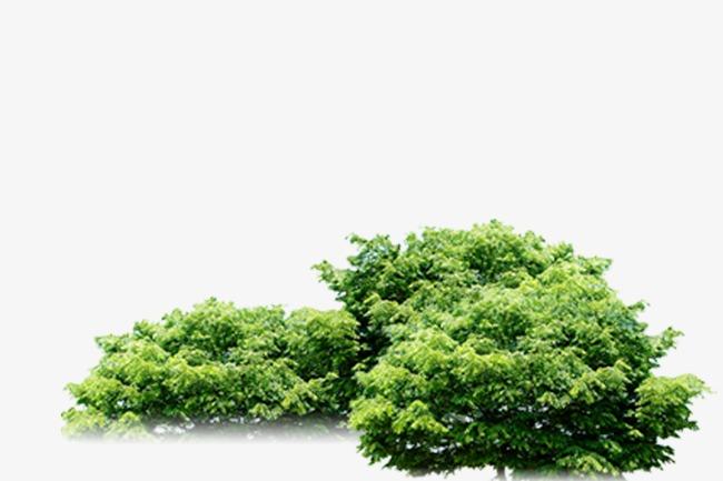 树丛【高清装饰元素png素材】-90设计