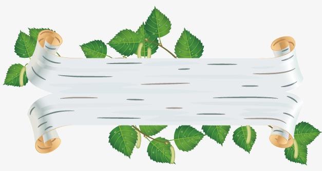 白桦树风格绿叶子标题背景矢量图图片下载白桦树植物