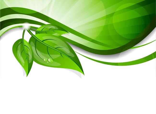 绿色树叶ppt边框图片