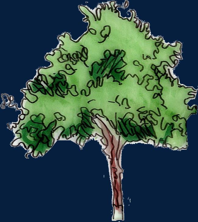 简笔画大树png素材-90设计