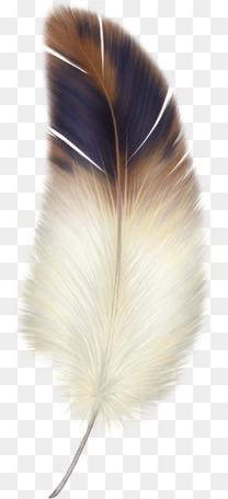精美纸蝴蝶梦幻柔软的羽毛