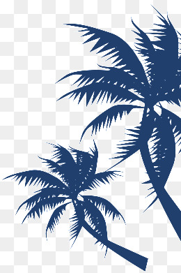 【椰子树素材】_椰子树图片素材大全_椰子树免费素材
