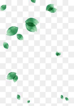 【树叶素材】_树叶图片素材大全_树叶免费素材下载_千