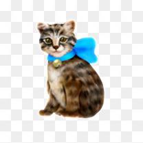 小花猫素材图片免费下载 高清装饰图案png 千库网 图片编号3438662