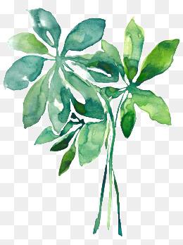 手绘水彩花朵 709*680 1043 280 手绘植物 504*365 128 33 水彩绿植