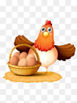 母鸡下蛋图片
