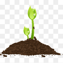 种子发芽_设计元素_种子发芽图片背景素材大全_千库网
