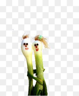 可爱大蒜图片