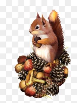 免费下载 松鼠吃坚果图片大全 千库网png