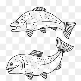 免费下载 卡通鱼简笔画图片大全 千库网png 第2页
