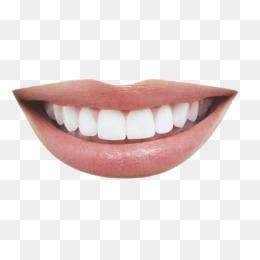 两面针图片_【口腔微笑素材】免费下载_口腔微笑图片大全_千库网png