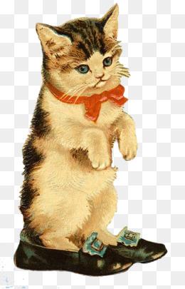 免费下载 手绘小猫咪图片大全 千库网png