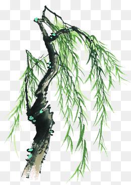 中国风手绘柳树水墨画
