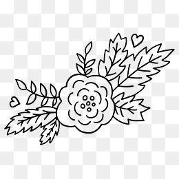 手绘黑色线条花卉叶子简笔画