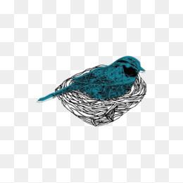 矢量图小鸟素材图片免费下载 高清psd 千库网 图片编号8269460