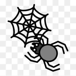 手绘蜘蛛和蜘蛛网图片