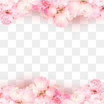 七夕情人节玫瑰