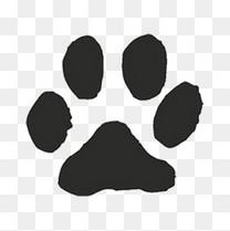 简洁猫脚印