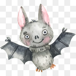 可爱灰色蝙蝠图片