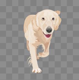 动漫狗行走路 动画人物走路图片