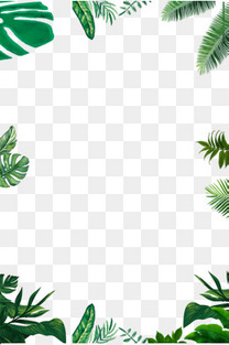 手绘树叶与草边框