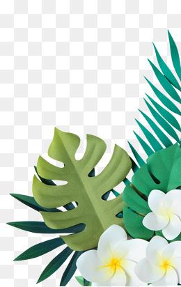 手绘植物叶子花朵装饰