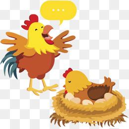 卡通手绘插画装饰公鸡母鸡鸡蛋孵蛋图片