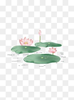 荷花荷叶绿色小清新手绘风元素