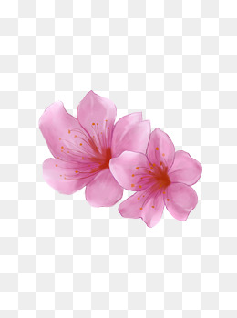 渐变图片手绘花瓣