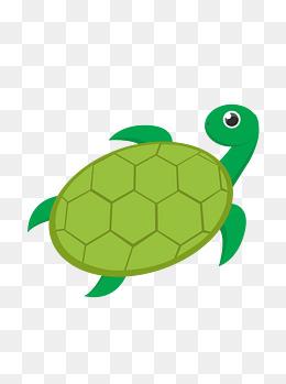 手绘乌龟卡通动物元素
