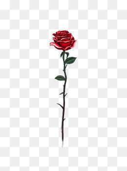 复古玫瑰花古典手绘花朵