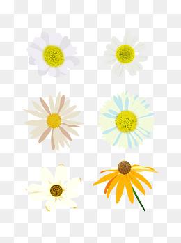 雏菊花朵黄色小清新手绘风元素