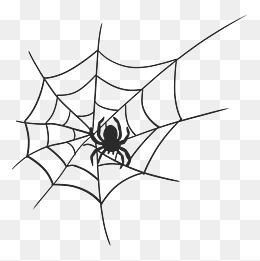 黑色卡通手绘蜘蛛网图片