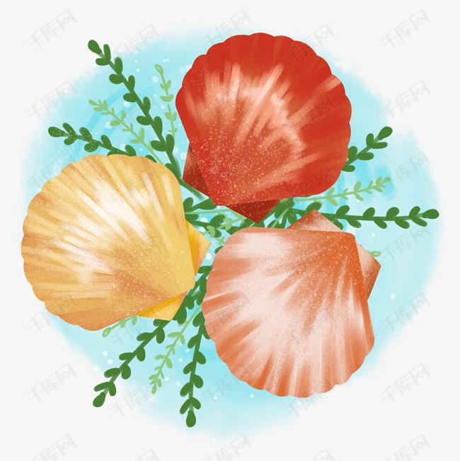 卡通手绘海鲜美食美味贝壳之三个扇贝素材图片免费下载 高清psd 千库网 图片编号11813118